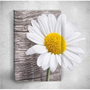 Nástenný 3D obraz Mosticx Daisy Detail, 40×60 cm