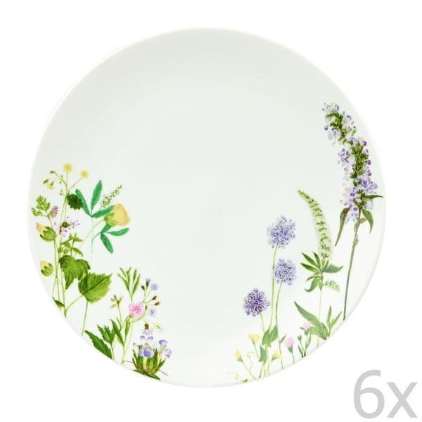 Sada 6 tanierov Churchill China Himalyan Flowers, 27 cm