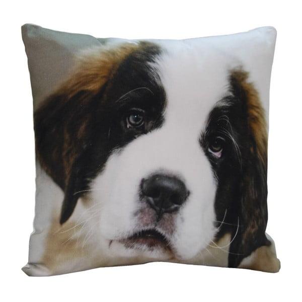 Vankúš Cute Puppy, 45x45 cm