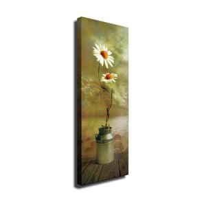 Nástenný obraz na plátne Daisy, 30 × 80 cm
