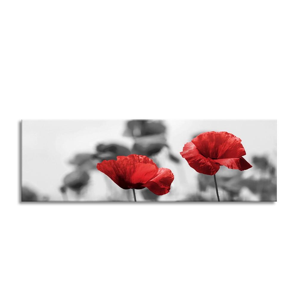Obraz Styler Glas Red Poppy, 50 × 125 cm