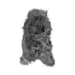 Tmavosivá ovčia kožušina s dlhým vlasom Arctic Fur Ptelja, 100 × 55 cm