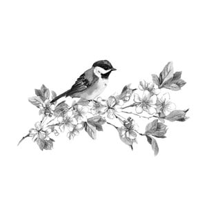 Obraz Black&White Birdie, 45 x 70 cm