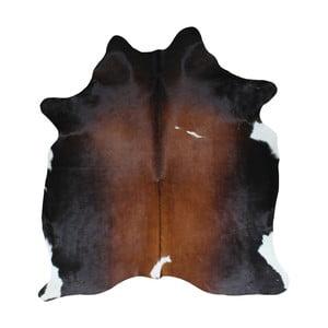 Čierno-hnedý koberec z hovädzej kože, 195 x 160 cm