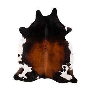 Pravá hovädzia koža Arctic Fur Tricolor, 214 × 199 cm