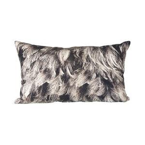 Vankúš s výplňou Feathers Grey, 50x30 cm