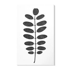 Nástenná dekorácia Vialli Design C-tru Leaf
