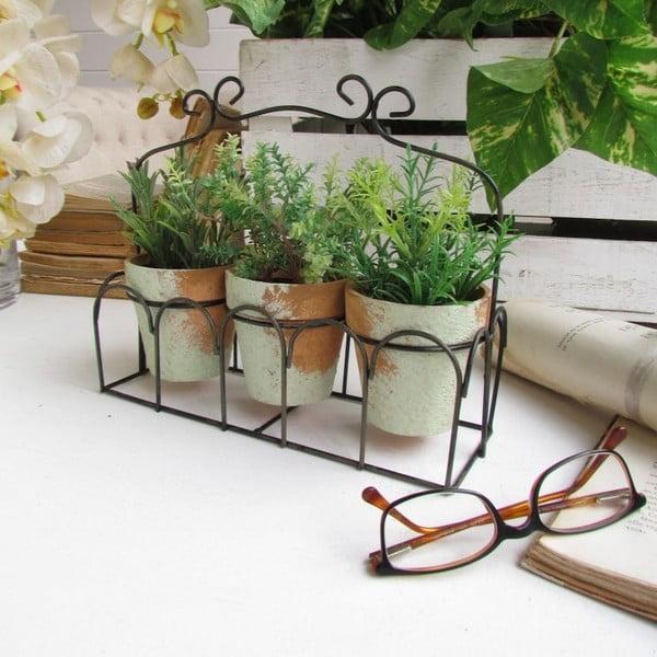 Sada 3 kvetináčov a podnosu Aromatique Herbs