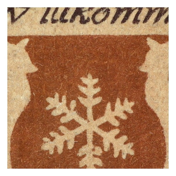 Rohožka Wilkommen, 73x45 cm