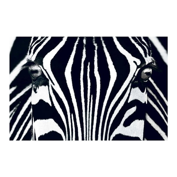 Maxi plagát Black & White, 175x115 cm