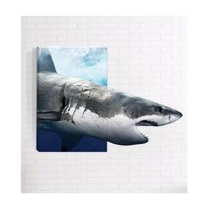 Nástenný 3D obraz Mosticx Žralok, 40 x 60 cm