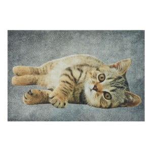 Predložka Grey Tabby 75x50 cm