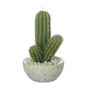 Sviečka Heaven Sends Cactus