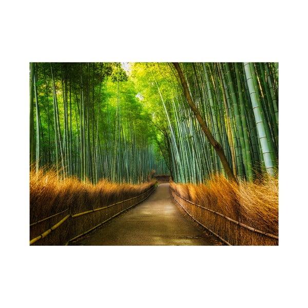 Veľkoformátová tapeta Bambus, 315x232 cm