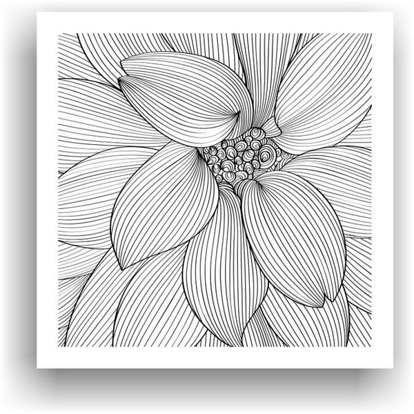 Obraz na vymaľovanie  Color It no. 7, 50x50 cm