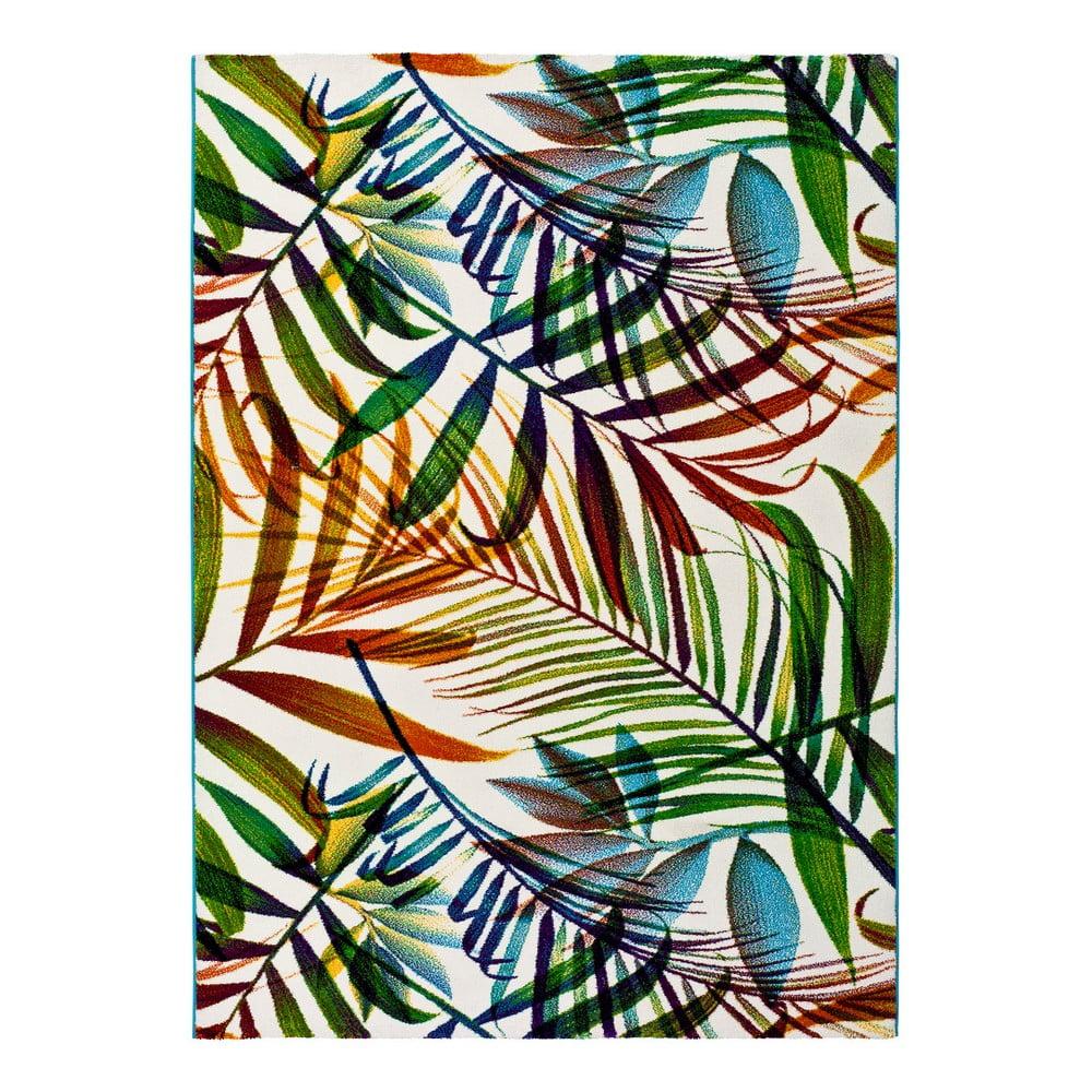 Koberec Universal Maloza Colors, 160 × 230 cm