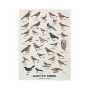 Utierka Gift Republic Garden Birds