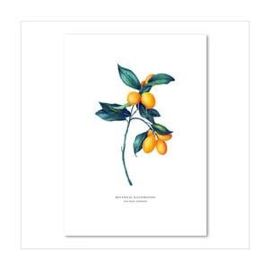 Plagát Leo La Douce Golden Orange, 21x29,7cm