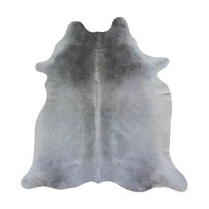 Sivý koberec z hovädzej kože, 198 x 145 cm