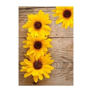 Vinylový koberec Flower, 52x75cm
