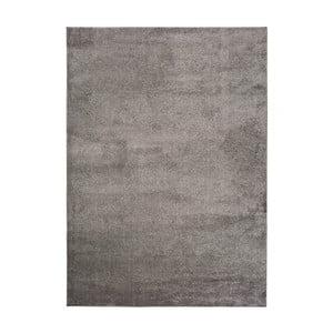 Tmavosivý koberec Universal Montana, 200 × 290 cm