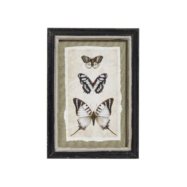 Obraz Butterlfy, 34x24 cm