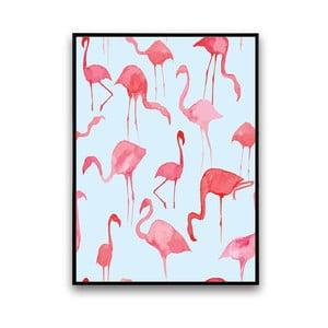 Plagát s pelikánmi, modré pozadie, 30 x 40 cm