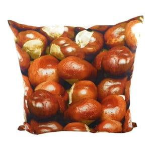 Vankúš Wood Chesnuts 50x50 cm