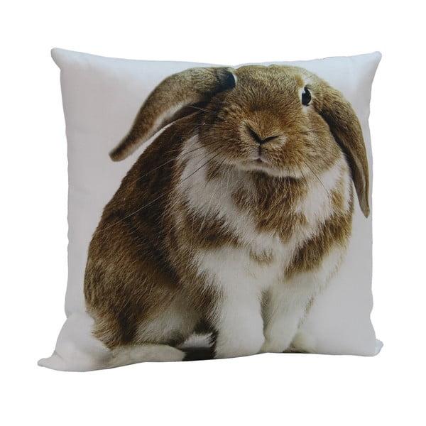 Vankúš Rabbit Frank, 45x45 cm