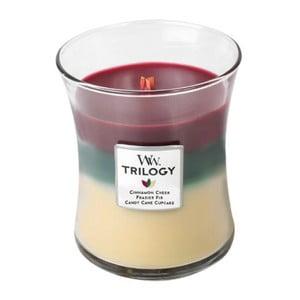 Vonná sviečka Woodwick Škorica, 60 hodín