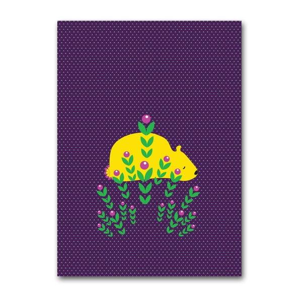 Plagát Medveď, stredný