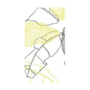 Tapeta Roselina, 48x300 cm