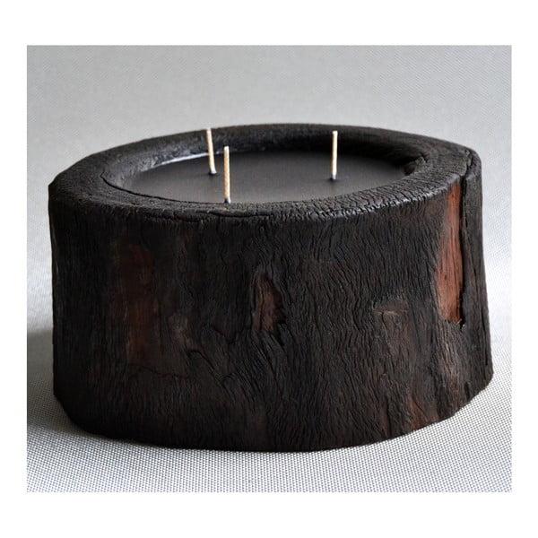 Palmová sviečka Legno Dark s vôňou vodného kvetu, 100 hodín horenia