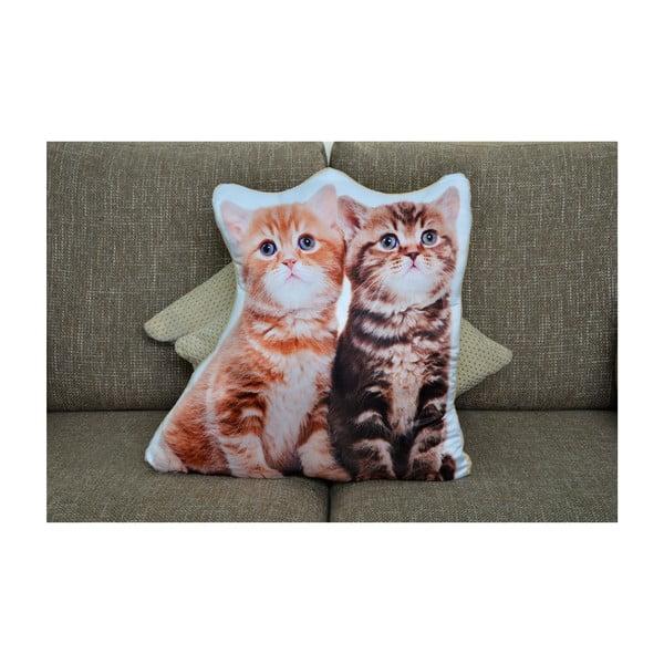 Vankúšik Adorable Cushions Dve mačiatka