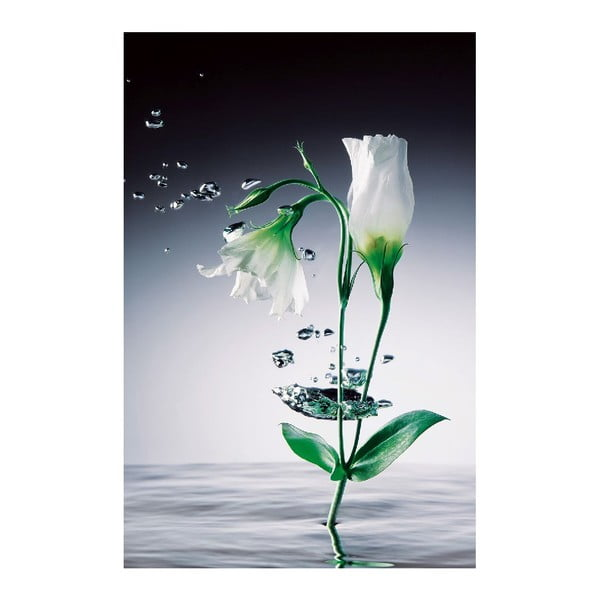 Maxi plagát Crystal Flowers, 115x175 cm