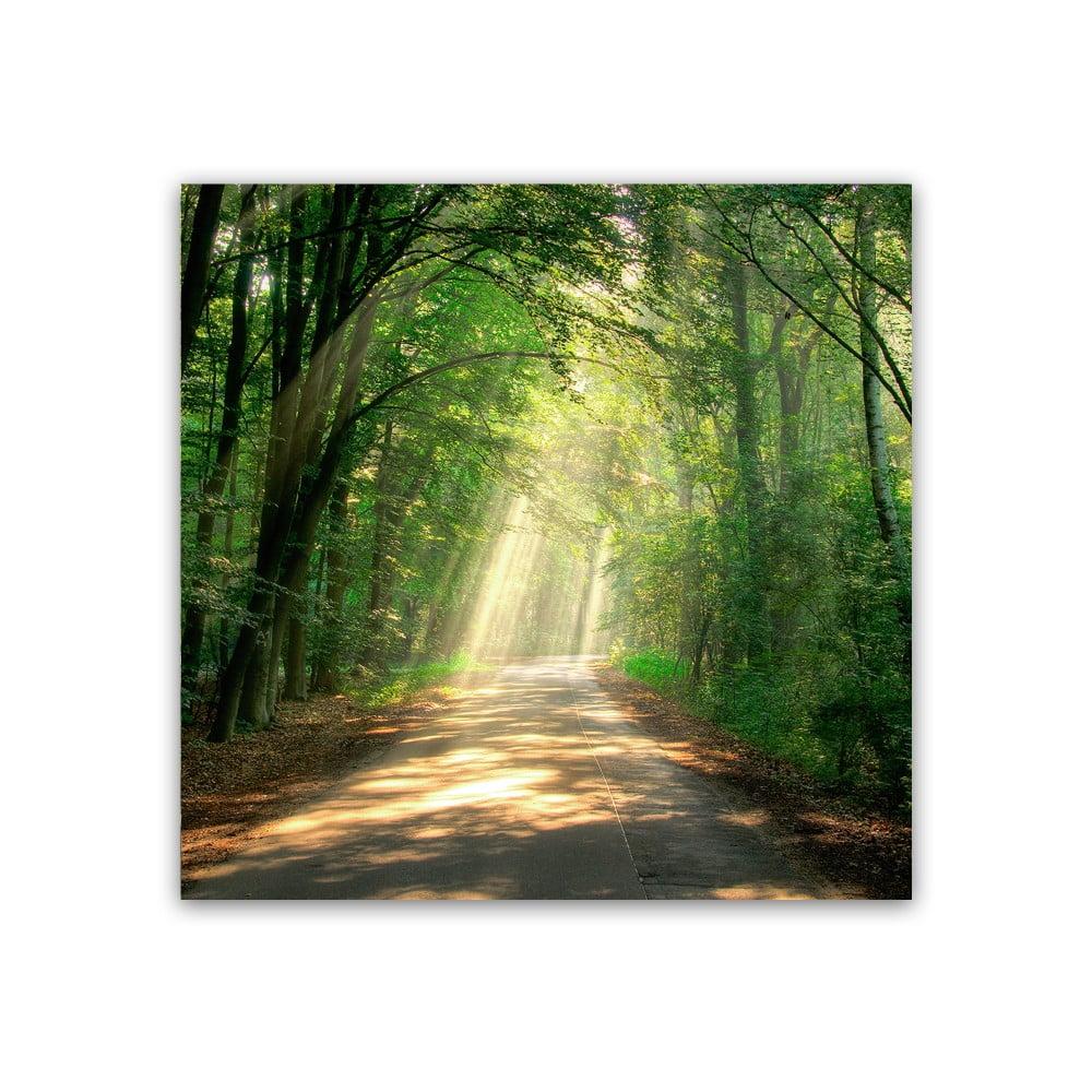 Obraz Styler Glas Nature Road, 30 × 30 cm
