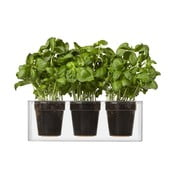 Trojica samozavlažovacích kvetináčov Cube, malé