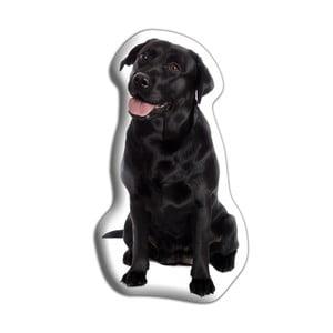 Vankúšik Adorable Cushions Čierny labrador