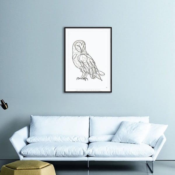 Plagát Barn Owl