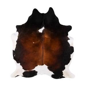 Pravá hovädzia koža Arctic Fur Tricolor, 200 × 193 cm