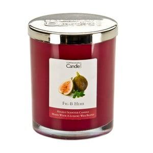 Aroma sviečka Fig&Herb, doba horenia 40 hodín