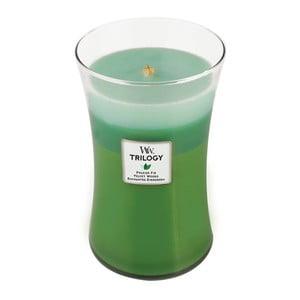 Sviečka s vôňou jedľového driev a citrusov Woodwick Trilogy Prechádzka lesom, doba horenia 130 hodín