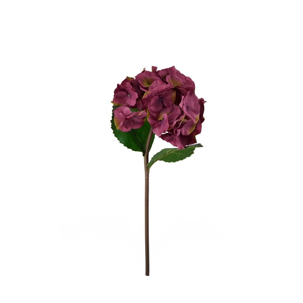 Dekoratívna kvetina Moycor Hydrangea, 55 cm