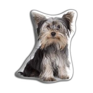 Vankúšik Adorable Cushions Yorkširáčik