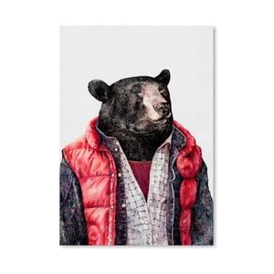 Plagát Black Bear, 30x42 cm