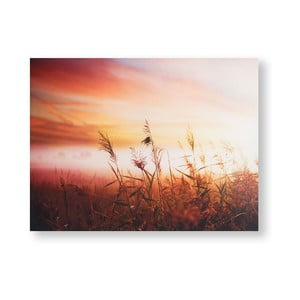Obraz Graham & Brown Morning Sunrise Meadow, 80 × 60 cm