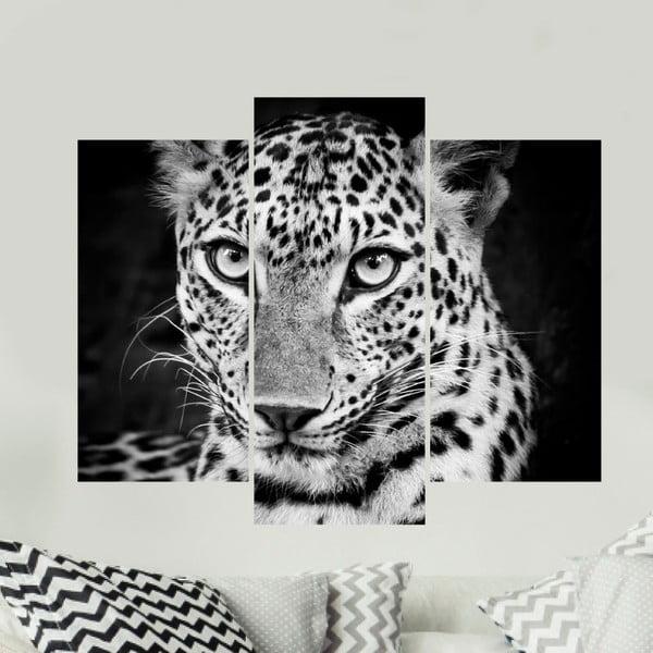 Samolepka Ambiance Leopard