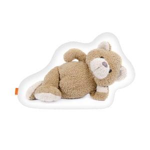Vankúš Teddy, 40x30 cm