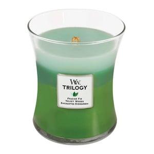 Sviečka s vôňou jedľového driev a citrusov Woodwick Trilogy Prechádzka lesom, doba horenia 60 hodín