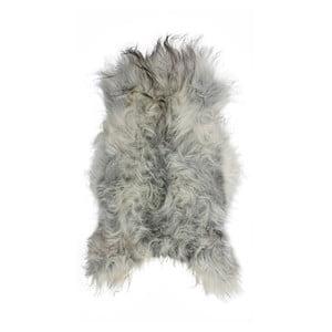 Svetlosivá ovčia kožušina s dlhým vlasom Arctic Fur Chesto, 90 × 50 cm